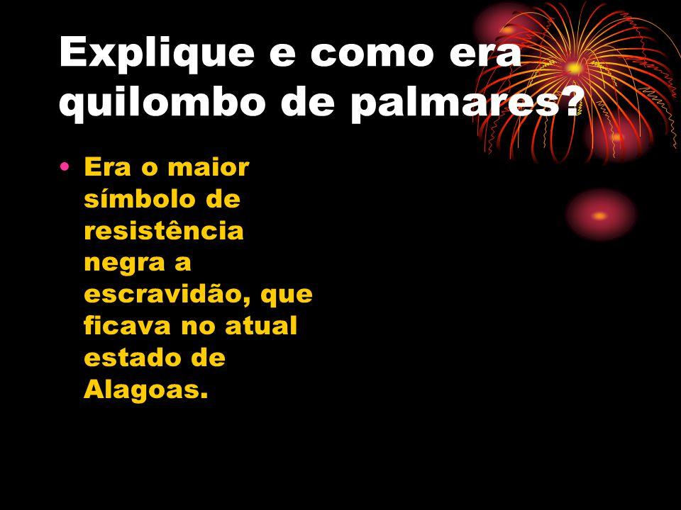 Explique e como era quilombo de palmares? Era o maior símbolo de resistência negra a escravidão, que ficava no atual estado de Alagoas.