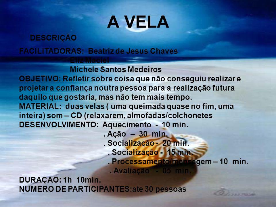 A VELA FACILITADORAS: Beatriz de Jesus Chaves Eliz Maciel Michele Santos Medeiros OBJETIVO: Refletir sobre coisa que não conseguiu realizar e projetar
