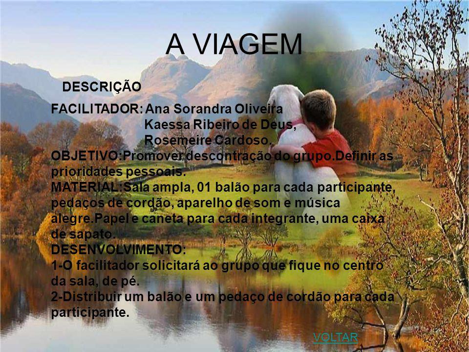 A VIAGEM DESCRIÇÃO FACILITADOR: Ana Sorandra Oliveira Kaessa Ribeiro de Deus, Rosemeire Cardoso. OBJETIVO:Promover descontração do grupo.Definir as pr