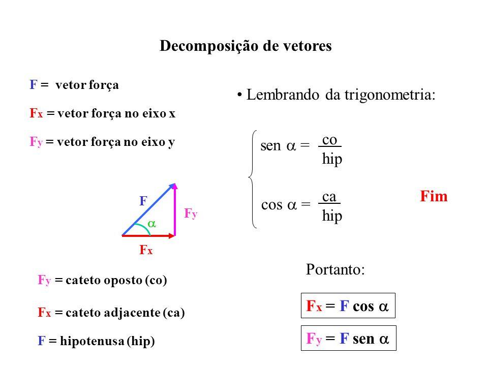 Decomposição de vetores F F = vetor força FxFx FyFy F x = vetor força no eixo x F y = vetor força no eixo y Lembrando da trigonometria: sen = co hip cos = ca hip F y = cateto oposto (co) F x = cateto adjacente (ca) F = hipotenusa (hip) Portanto: Fx Fx = F cos Fy Fy = F sen Fim