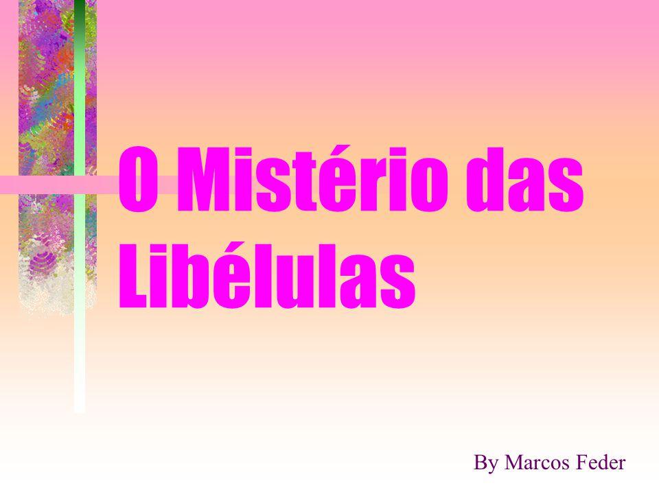 O Mistério das Libélulas By Marcos Feder