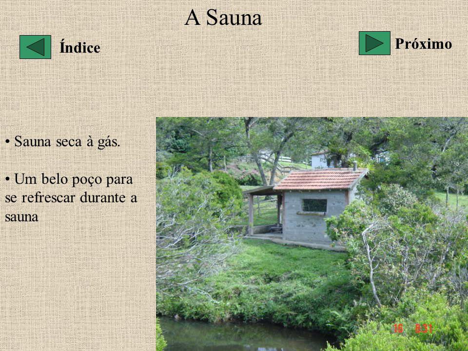 A Sauna Sauna seca à gás. Um belo poço para se refrescar durante a sauna Próximo Índice