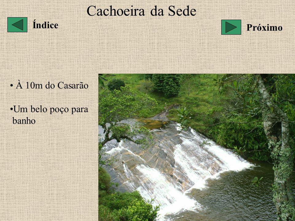 Cachoeira da Sede À 10m do Casarão Um belo poço para banho Índice Próximo