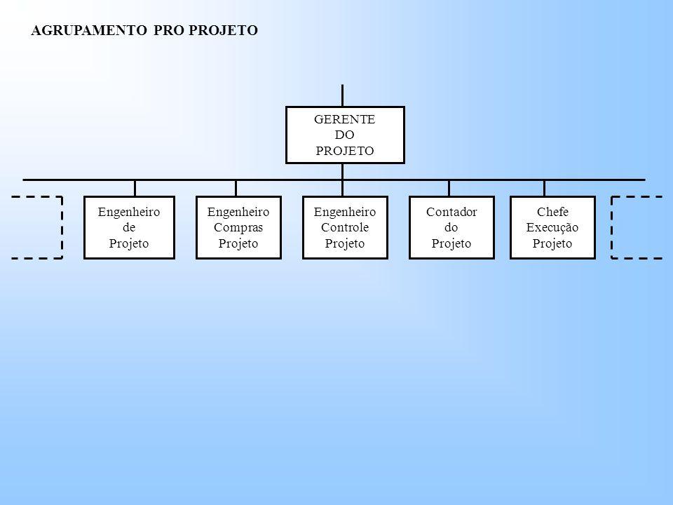 GERENTE DO PROJETO Engenheiro de Projeto Chefe Execução Projeto Contador do Projeto Engenheiro Compras Projeto Engenheiro Controle Projeto AGRUPAMENTO PRO PROJETO