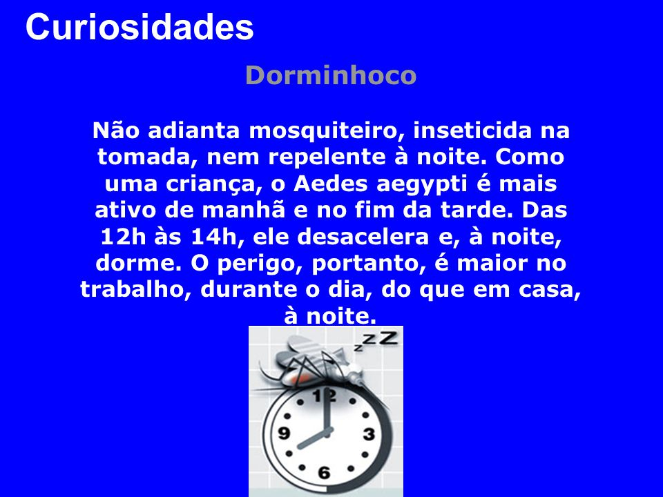 Curiosidades Dorminhoco Não adianta mosquiteiro, inseticida na tomada, nem repelente à noite. Como uma criança, o Aedes aegypti é mais ativo de manhã