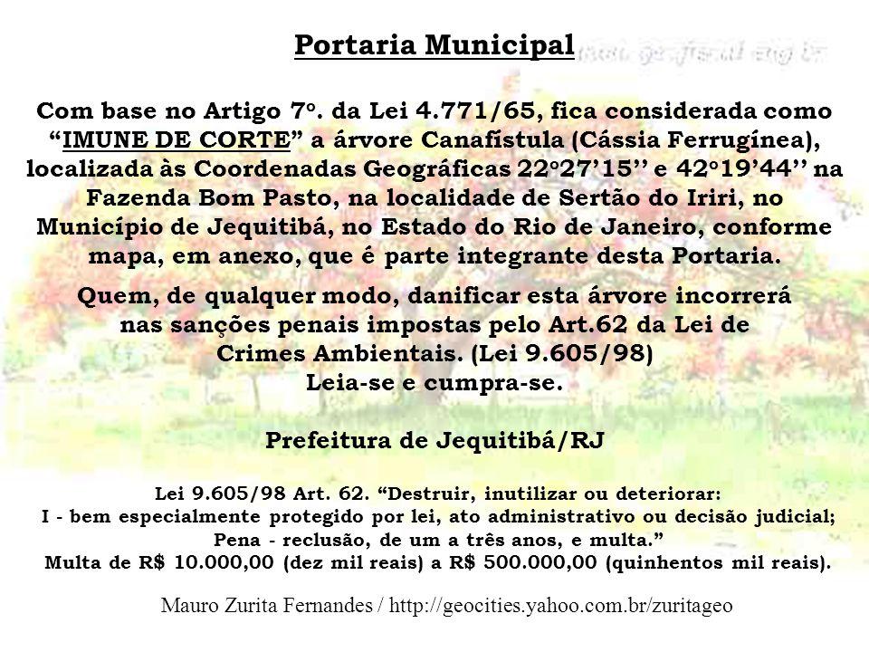Portaria Municipal Com base no Artigo 7 o. da Lei 4.771/65, fica considerada como IMUNE DE CORTE a árvore Canafístula (Cássia Ferrugínea), localizada