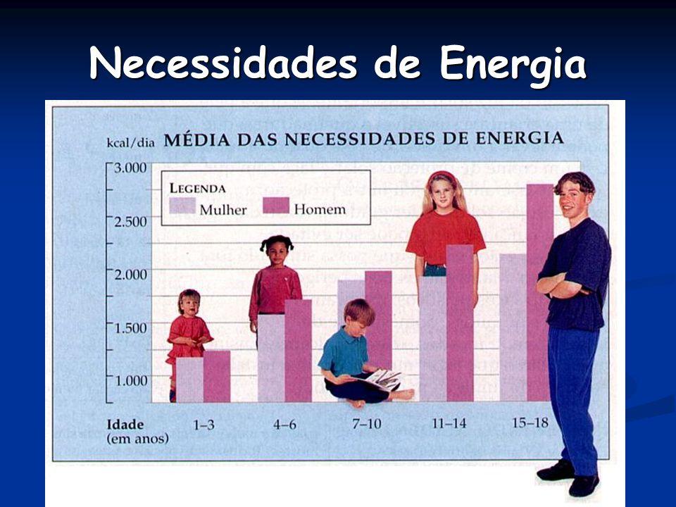 Necessidades de Energia