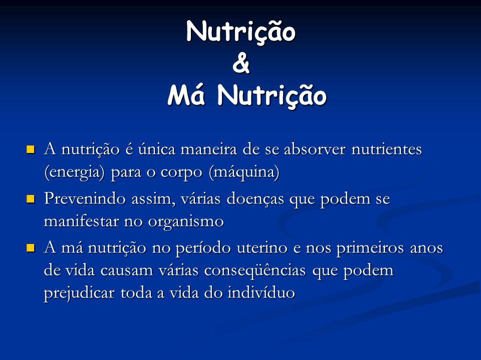 Nutrição & Má Nutrição A nutrição é única maneira de se absorver nutrientes (energia) para o corpo (máquina) A nutrição é única maneira de se absorver