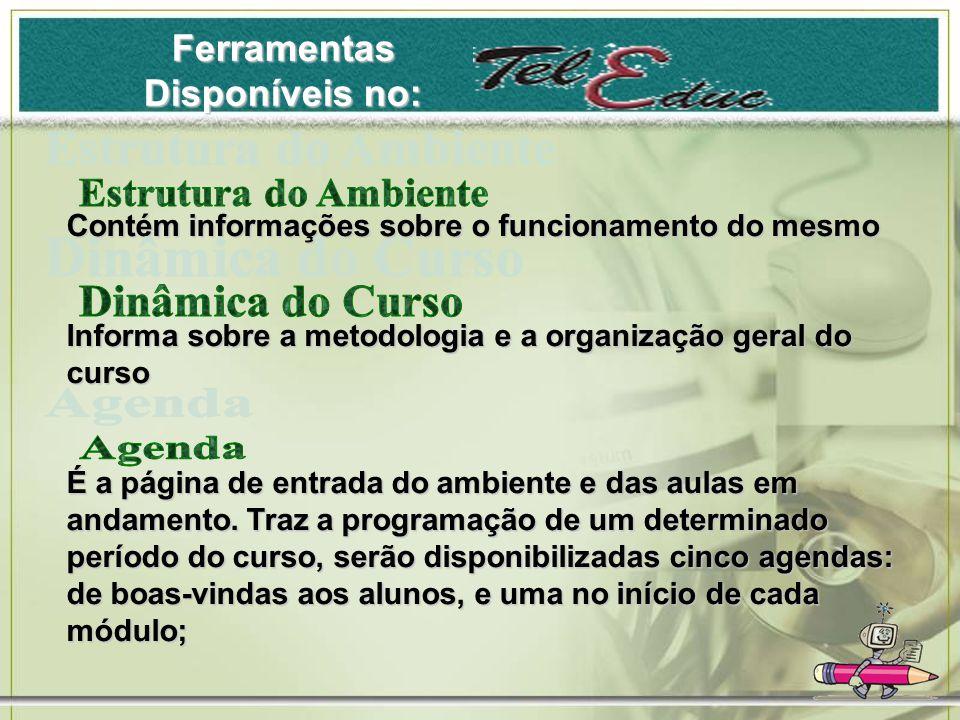 Ferramentas Disponíveis no: Contém informações sobre o funcionamento do mesmo Informa sobre a metodologia e a organização geral do curso É a página de entrada do ambiente e das aulas em andamento.