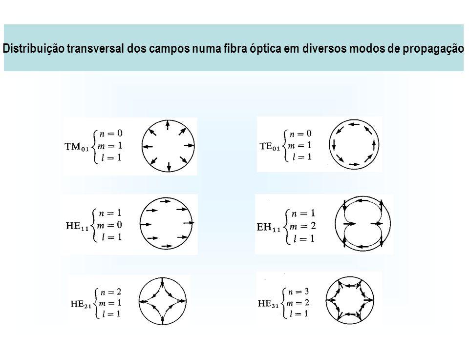 Distribuição transversal dos campos numa fibra óptica em diversos modos de propagação