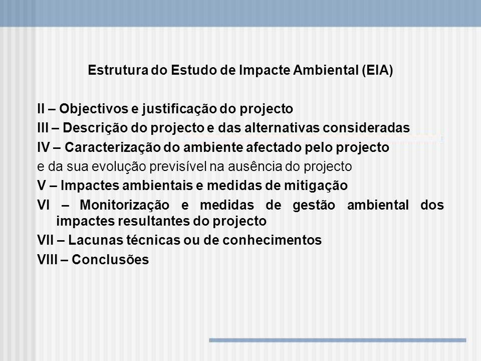 Estrutura do Estudo de Impacte Ambiental (EIA) II – Objectivos e justificação do projecto III – Descrição do projecto e das alternativas consideradas