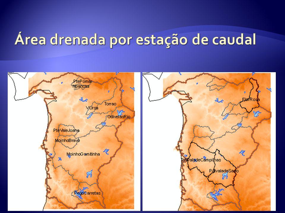 IST- MARETEC 2009 Precipitação 1 Precipitation Flow