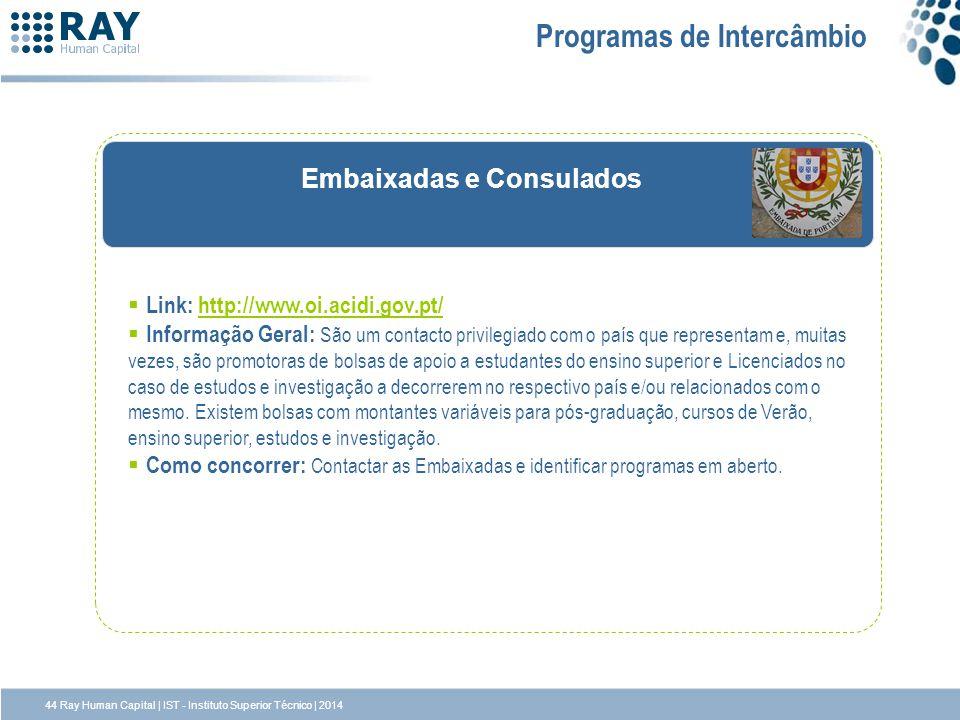 Embaixadas e Consulados Programas de Intercâmbio Link: http://www.oi.acidi.gov.pt/http://www.oi.acidi.gov.pt/ Informação Geral: São um contacto privil