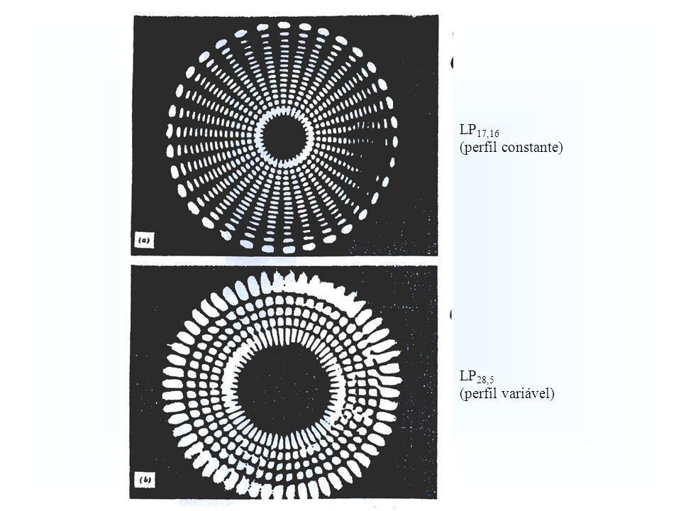 LP 17,16 (perfil constante) LP 28,5 (perfil variável)