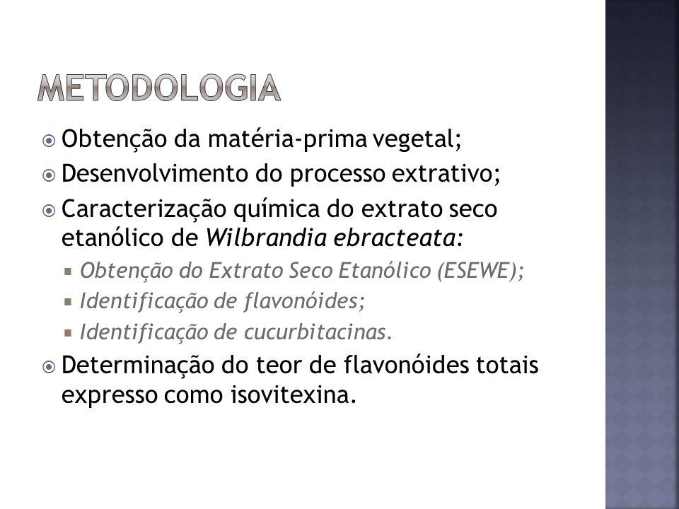 Obtenção da matéria-prima vegetal; Desenvolvimento do processo extrativo; Caracterização química do extrato seco etanólico de Wilbrandia ebracteata: O