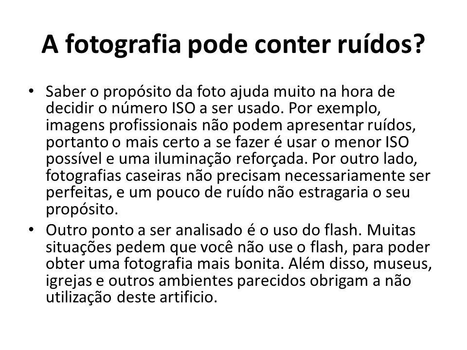 A fotografia pode conter ruídos? Saber o propósito da foto ajuda muito na hora de decidir o número ISO a ser usado. Por exemplo, imagens profissionais