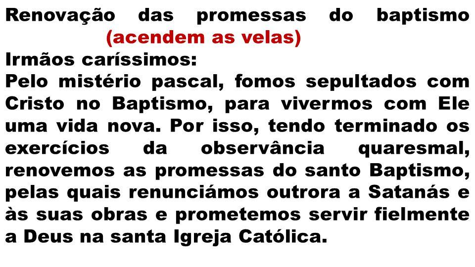 Renovação das promessas do baptismo (acendem as velas) Irmãos caríssimos: Pelo mistério pascal, fomos sepultados com Cristo no Baptismo, para vivermos