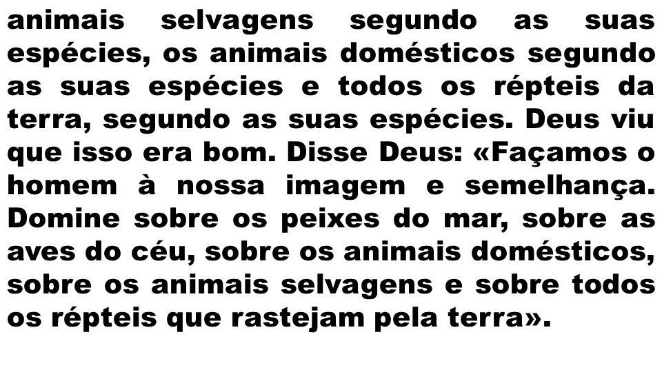 animais selvagens segundo as suas espécies, os animais domésticos segundo as suas espécies e todos os répteis da terra, segundo as suas espécies. Deus