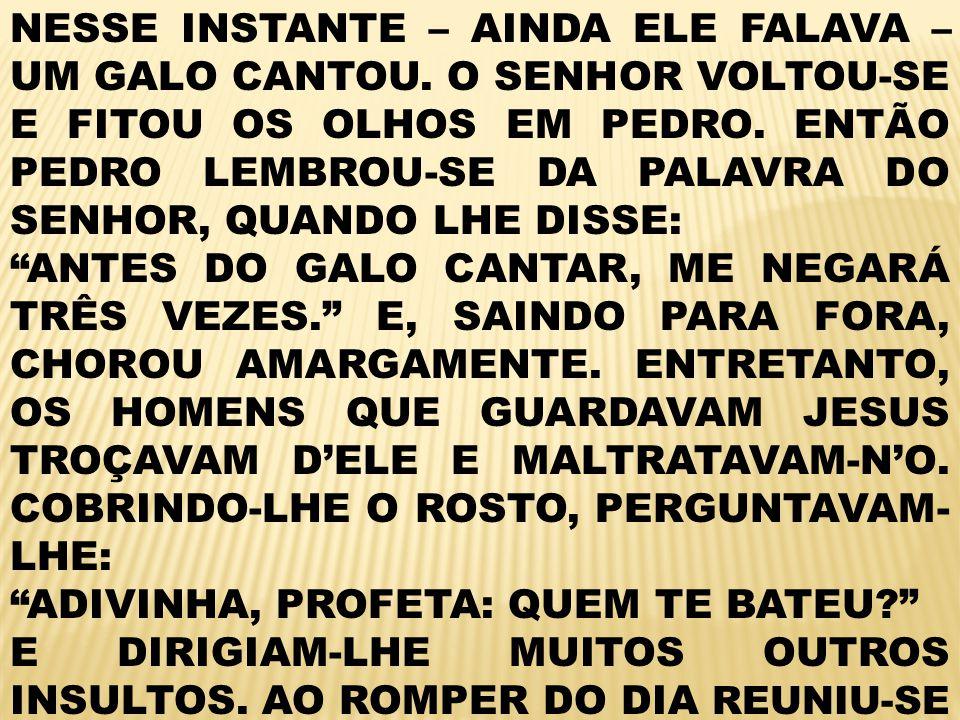 NESSE INSTANTE – AINDA ELE FALAVA – UM GALO CANTOU.