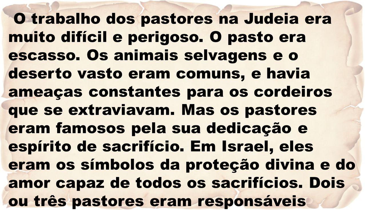 O trabalho dos pastores na Judeia era muito difícil e perigoso.