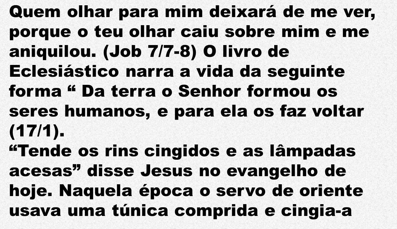 Quem olhar para mim deixará de me ver, porque o teu olhar caiu sobre mim e me aniquilou. (Job 7/7-8) O livro de Eclesiástico narra a vida da seguinte