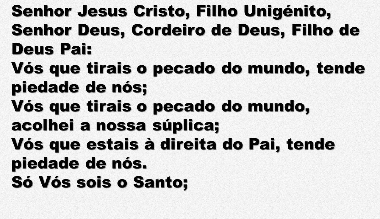 Senhor Jesus Cristo, Filho Unigénito, Senhor Deus, Cordeiro de Deus, Filho de Deus Pai: Vós que tirais o pecado do mundo, tende piedade de nós; Vós qu
