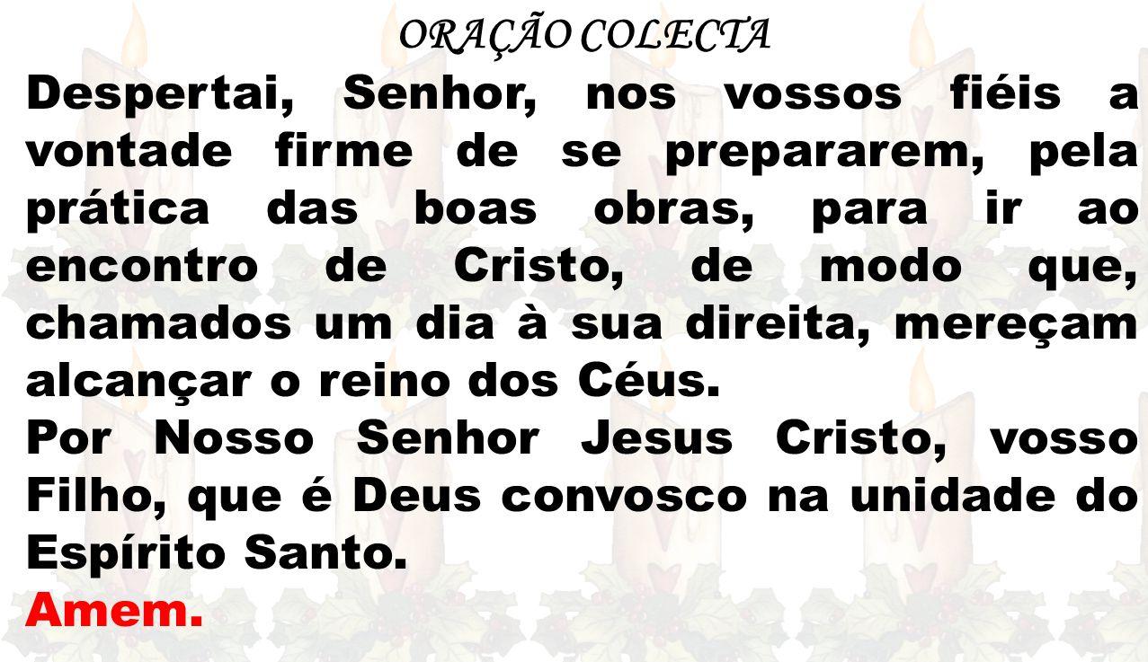 ORAÇÃO COLECTA Despertai, Senhor, nos vossos fiéis a vontade firme de se prepararem, pela prática das boas obras, para ir ao encontro de Cristo, de mo