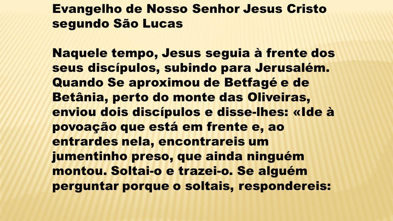 Evangelho de Nosso Senhor Jesus Cristo segundo São Lucas Naquele tempo, Jesus seguia à frente dos seus discípulos, subindo para Jerusalém. Quando Se a