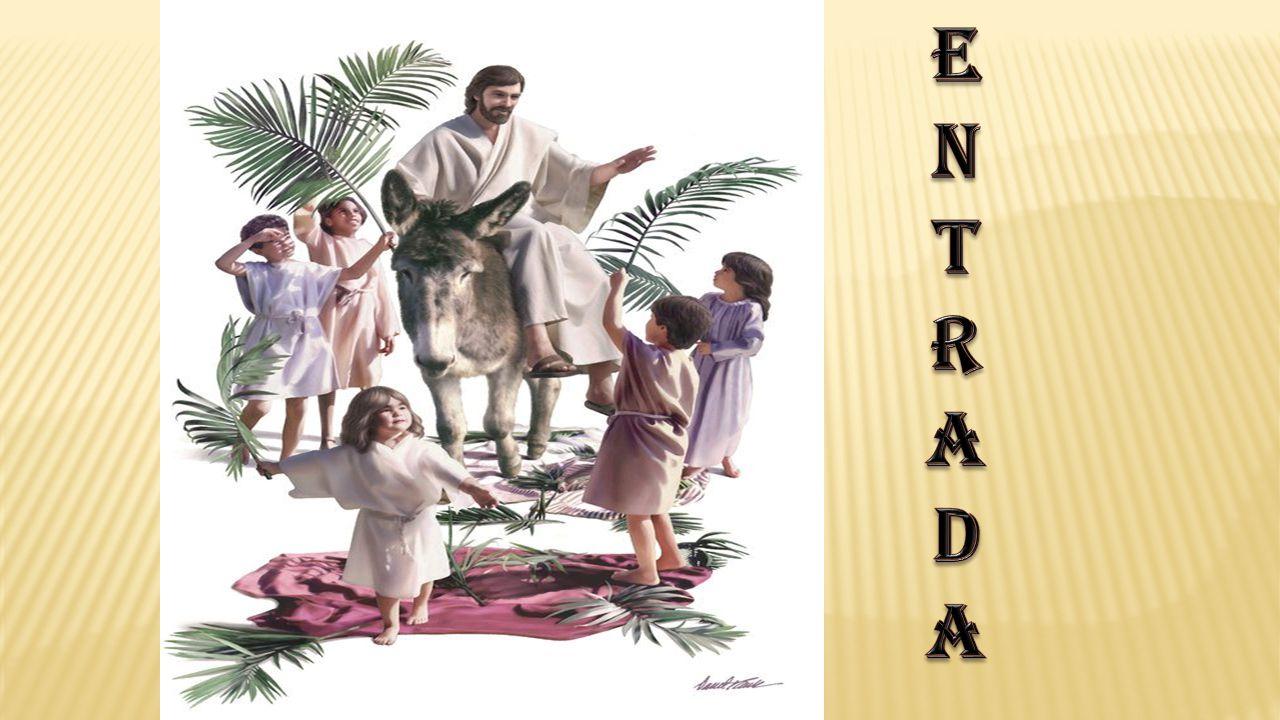 «Bendito o Rei que vem em nome do Senhor.Paz no Céu e glória nas alturas!».