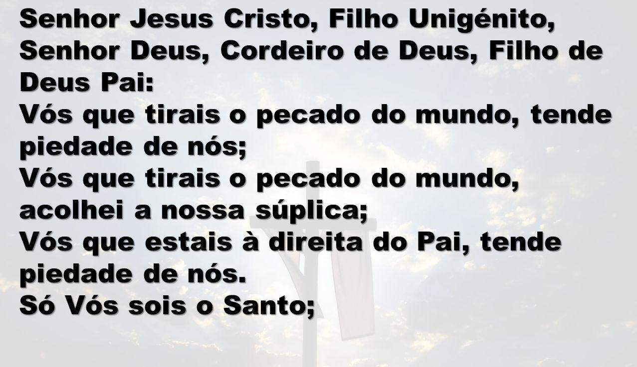 LEITURA II 2 Tim 2, 8-13 Por isso, tudo suporto por causa dos eleitos, para que obtenham a salvação que está em Cristo Jesus, com a glória eterna.