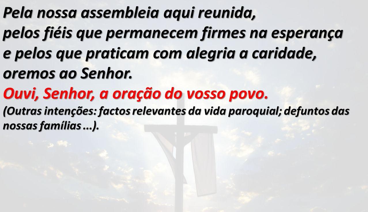 Pela nossa assembleia aqui reunida, pelos fiéis que permanecem firmes na esperança e pelos que praticam com alegria a caridade, oremos ao Senhor.