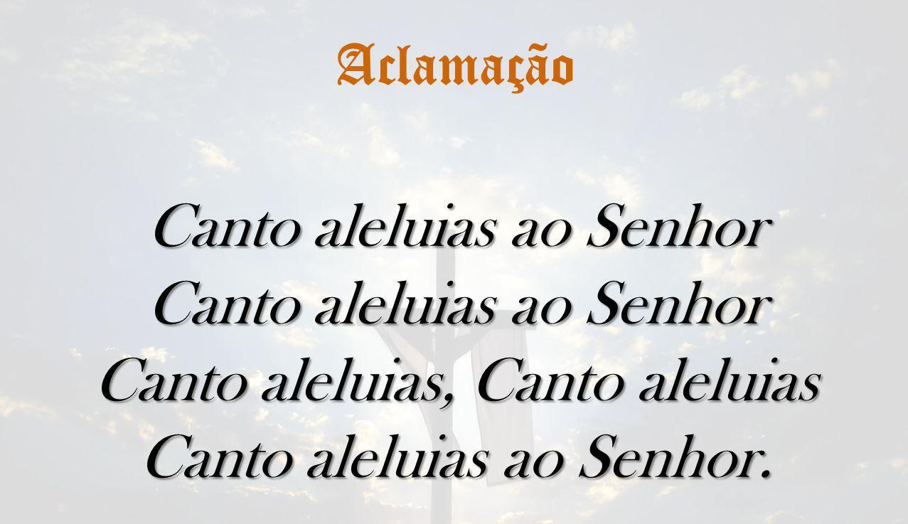 Aclamação Canto aleluias ao Senhor Canto aleluias, Canto aleluias Canto aleluias ao Senhor.