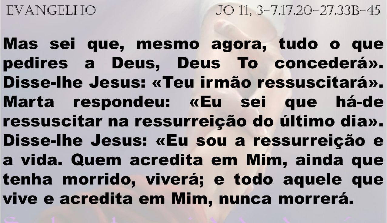 EVANGELHO Jo 11, 3-7.17.20-27.33b-45 Mas sei que, mesmo agora, tudo o que pedires a Deus, Deus To concederá». Disse-lhe Jesus: «Teu irmão ressuscitará