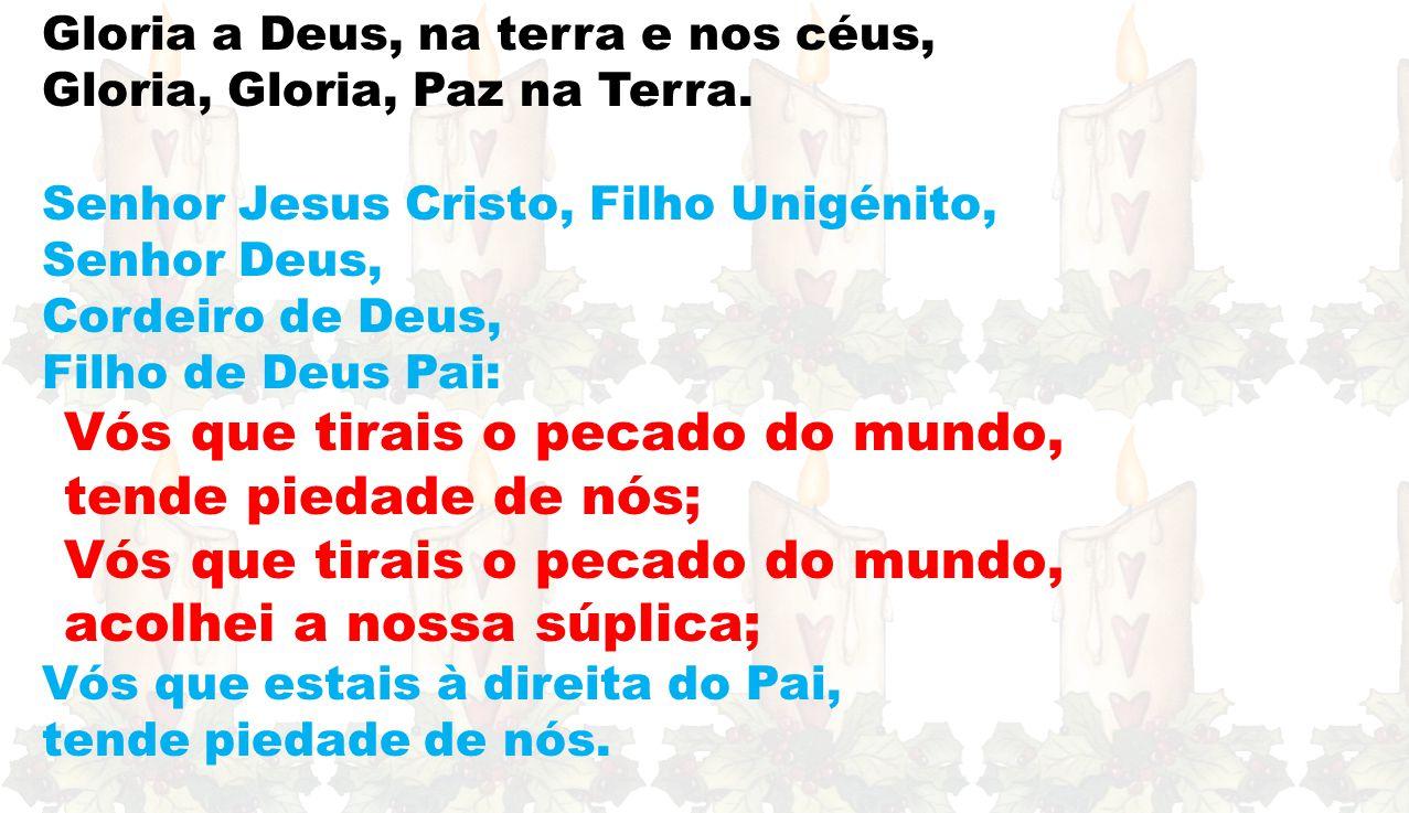 Ef 1, 3-6.11-12 «Deus escolheu-nos em Cristo, antes da criação do mundo»