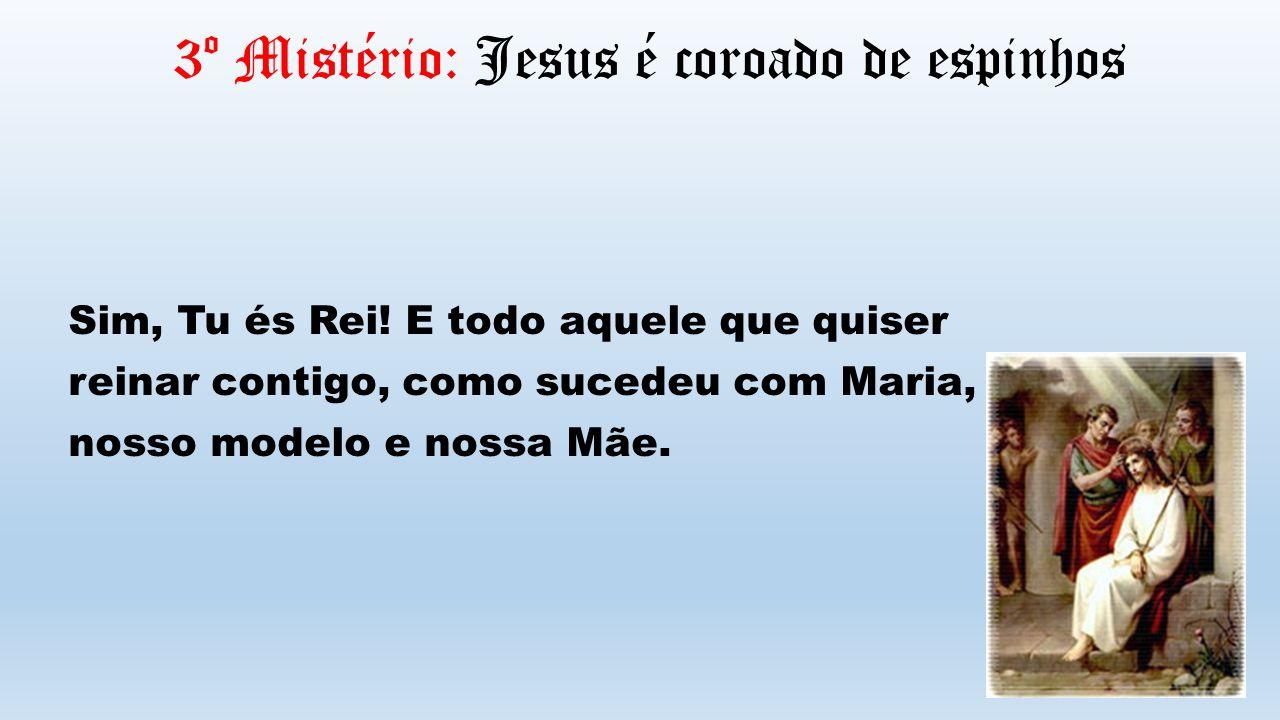 3º Mistério: Jesus é coroado de espinhos Sim, Tu és Rei! E todo aquele que quiser reinar contigo, como sucedeu com Maria, nosso modelo e nossa Mãe.