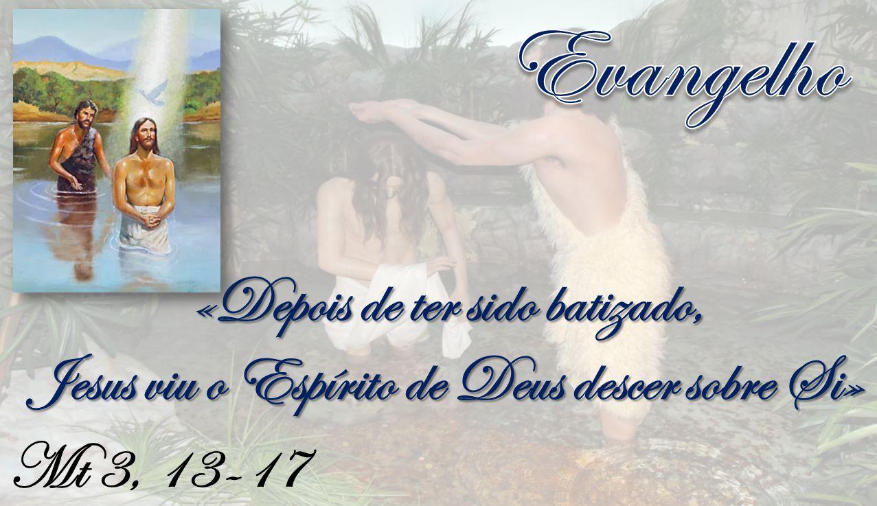Mt 3, 13-17 «Depois de ter sido batizado, Jesus viu o Espírito de Deus descer sobre Si»