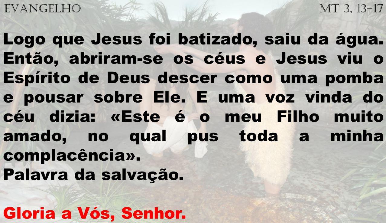 EVANGELHO Mt 3, 13-17 Logo que Jesus foi batizado, saiu da água. Então, abriram-se os céus e Jesus viu o Espírito de Deus descer como uma pomba e pous