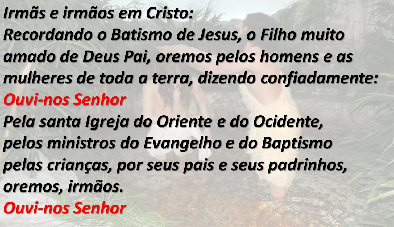 Irmãs e irmãos em Cristo: Recordando o Batismo de Jesus, o Filho muito amado de Deus Pai, oremos pelos homens e as mulheres de toda a terra, dizendo c