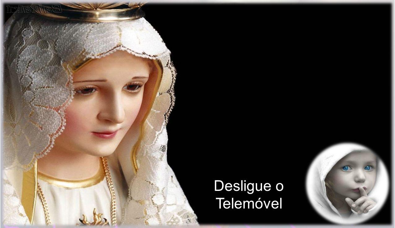 Próximo domingo é Domingo dos Ramos.Não haverá missa nas capelas.