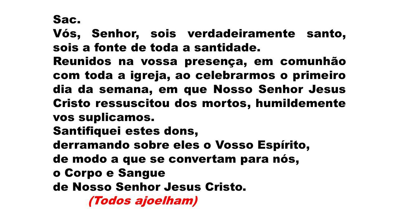 Sac.Vós, Senhor, sois verdadeiramente santo, sois a fonte de toda a santidade.