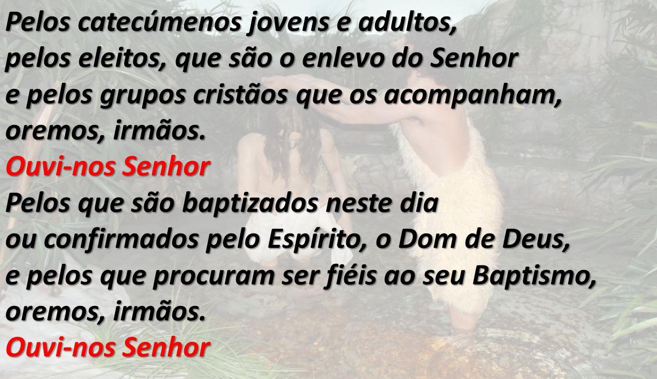 Pelos catecúmenos jovens e adultos, pelos eleitos, que são o enlevo do Senhor e pelos grupos cristãos que os acompanham, oremos, irmãos. Ouvi-nos Senh