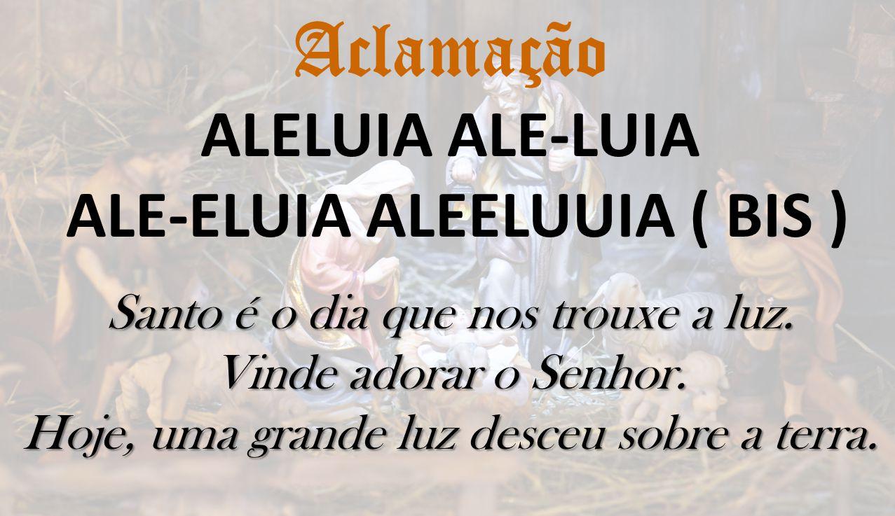 Aclamação ALELUIA ALE-LUIA ALE-ELUIA ALEELUUIA ( BIS ) Santo é o dia que nos trouxe a luz. Vinde adorar o Senhor. Hoje, uma grande luz desceu sobre a