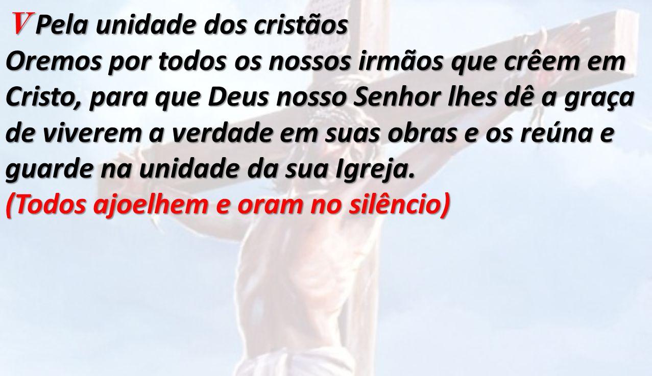V Pela unidade dos cristãos Oremos por todos os nossos irmãos que crêem em Cristo, para que Deus nosso Senhor lhes dê a graça de viverem a verdade em