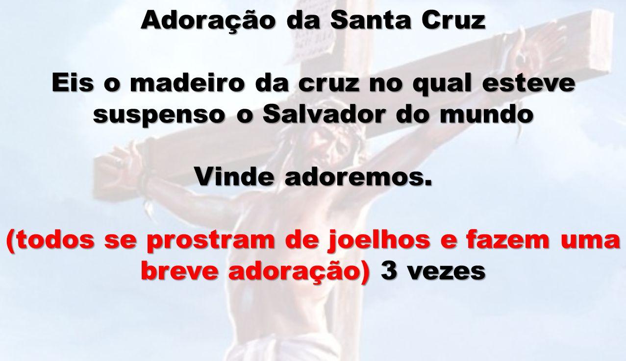 Adoração da Santa Cruz Eis o madeiro da cruz no qual esteve suspenso o Salvador do mundo Vinde adoremos. (todos se prostram de joelhos e fazem uma bre
