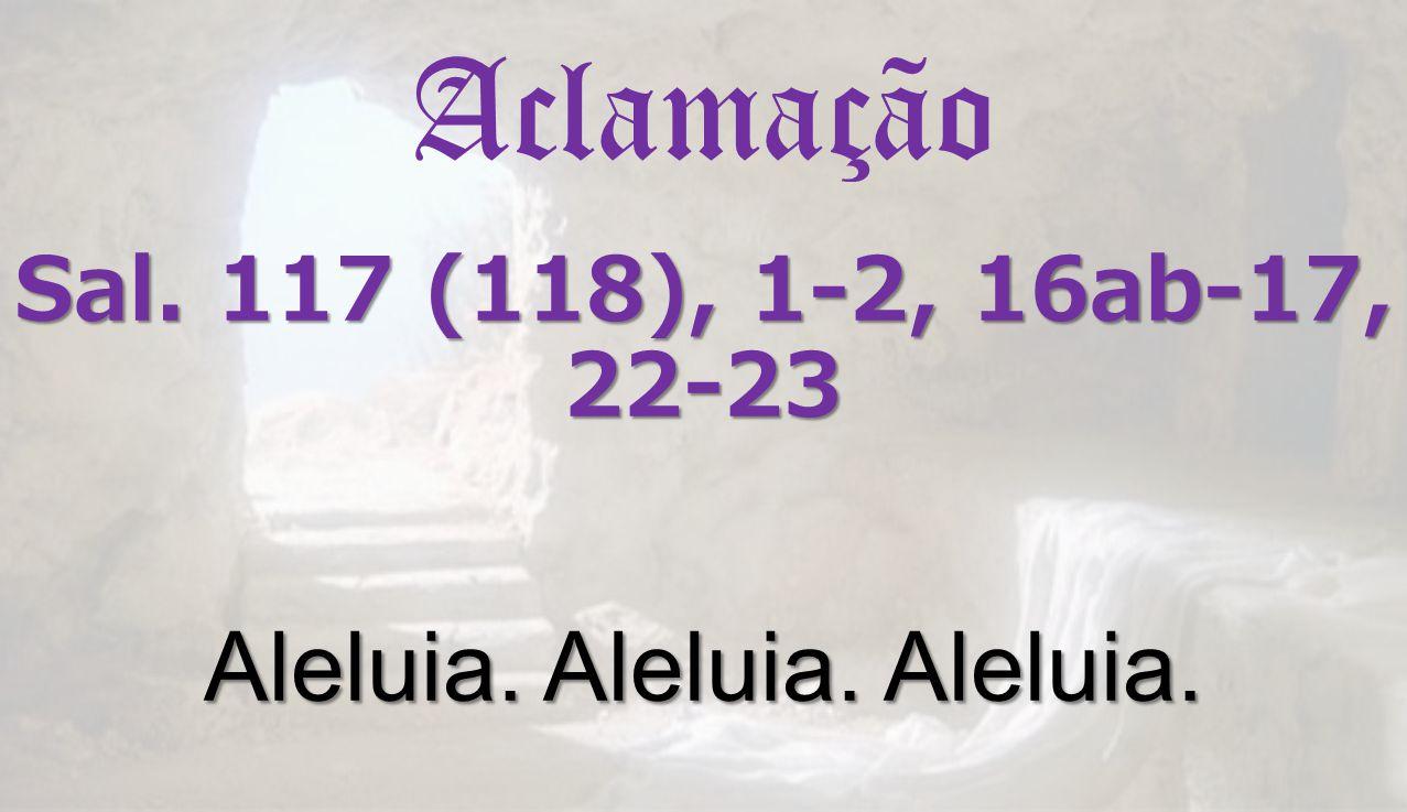 Sal. 117 (118), 1-2, 16ab-17, 22-23 Aleluia. Aleluia. Aleluia. Aclamação Sal. 117 (118), 1-2, 16ab-17, 22-23 Aleluia. Aleluia. Aleluia.