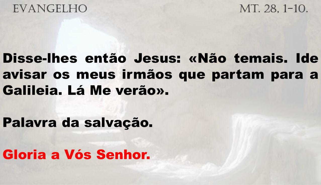 EVANGELHO Mt. 28, 1-10. Disse-lhes então Jesus: «Não temais. Ide avisar os meus irmãos que partam para a Galileia. Lá Me verão». Palavra da salvação.