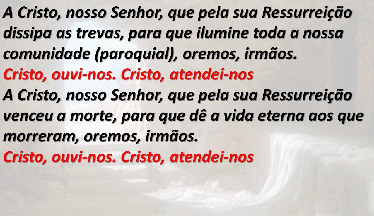A Cristo, nosso Senhor, que pela sua Ressurreição dissipa as trevas, para que ilumine toda a nossa comunidade (paroquial), oremos, irmãos. Cristo, ouv