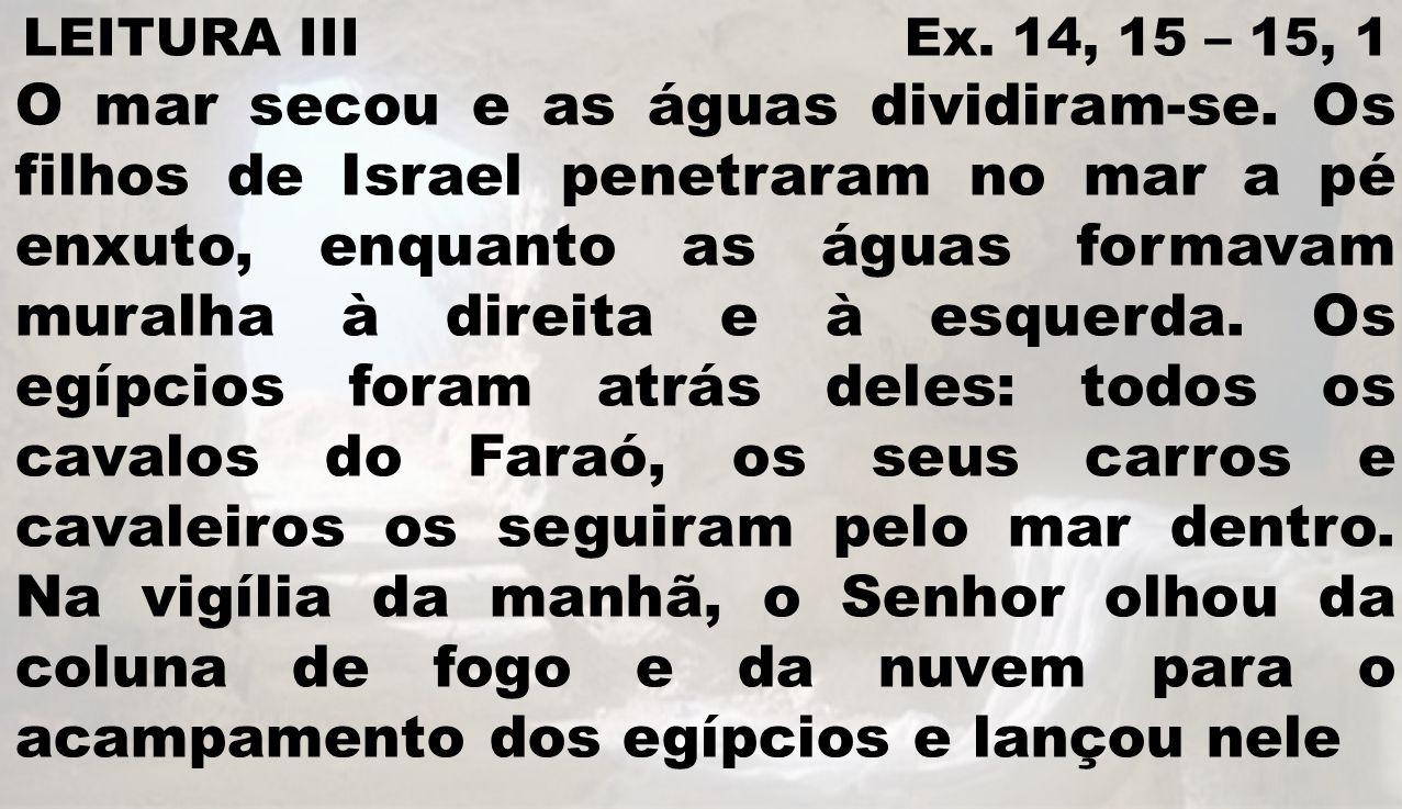 LEITURA III Ex. 14, 15 – 15, 1 O mar secou e as águas dividiram-se. Os filhos de Israel penetraram no mar a pé enxuto, enquanto as águas formavam mura