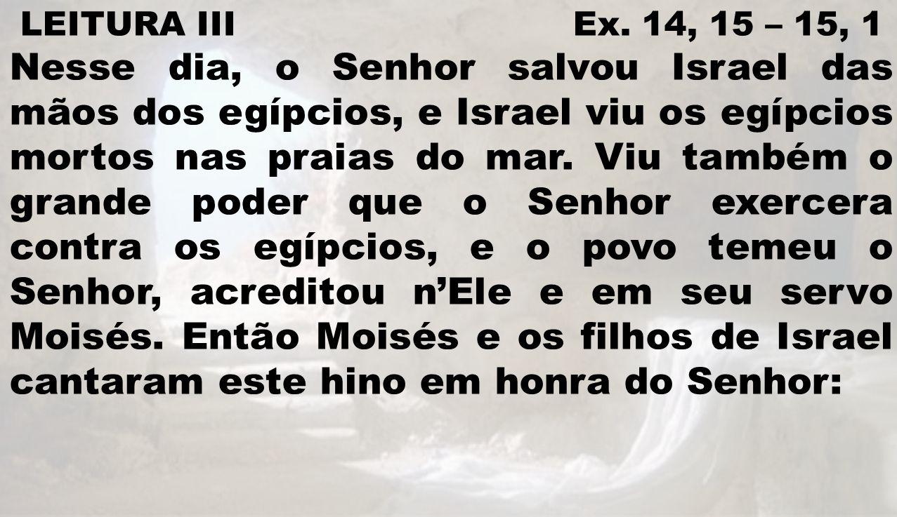 LEITURA III Ex. 14, 15 – 15, 1 Nesse dia, o Senhor salvou Israel das mãos dos egípcios, e Israel viu os egípcios mortos nas praias do mar. Viu também