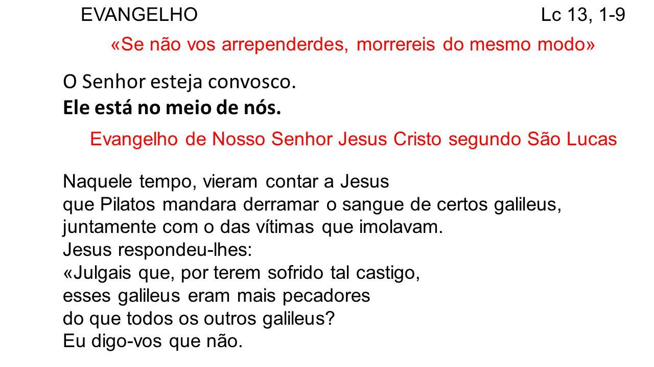 EVANGELHO Lc 13, 1-9 «Se não vos arrependerdes, morrereis do mesmo modo» O Senhor esteja convosco. Ele está no meio de nós. Evangelho de Nosso Senhor